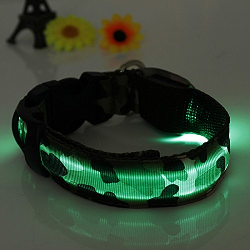 Kungfu Mall Hund LED Halsband Nylon Sicherheits Licht-up Flashing Collar von Kungfu Mall