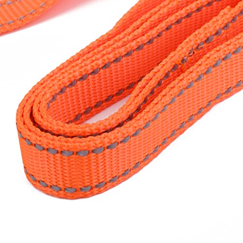Sharplace Reflektierende Hundeleine Hunde Trainingsleine Haustier Welpen Leine 1,2 Meter - Orange, M von Sharplace