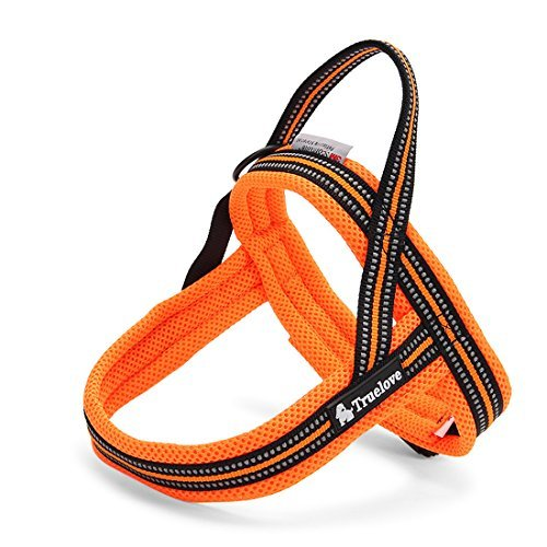 ZEEY Hundegeschirr Fluorescent 3M Night Reflective Stripes, weiche einstellbare Hunde Weste Harness gepolsterte Mesh-Kabelbaum für große / mittlere / kleine Hunde, orange (M (58-76cm)) von ZEEY